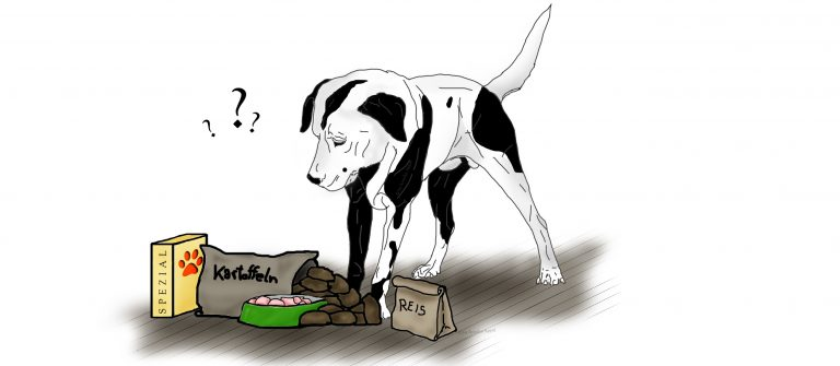 Schonkost-Hund-Futterblatt
