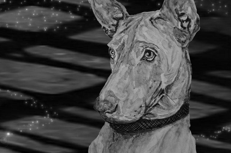 Futterblatt-Spacewalk-Protein-Hund